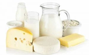 Dairy susu roti gandum enak