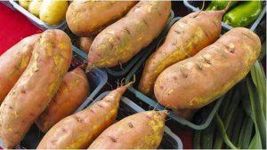umbi kentang singkong makanan penambah berat badan