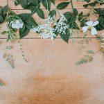 Pilihan Bunga Paling Aesthetic di Toko Bunga Terbaik